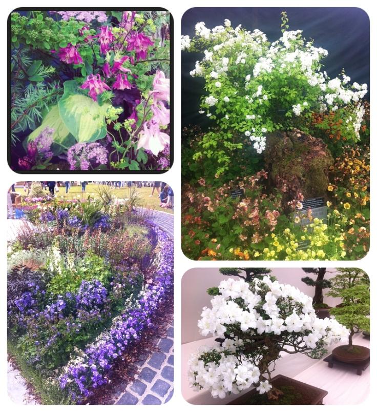 Holker Hall garden festival 2013
