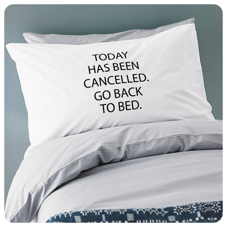 Minna's Room Today Has Been Cancelled pillow