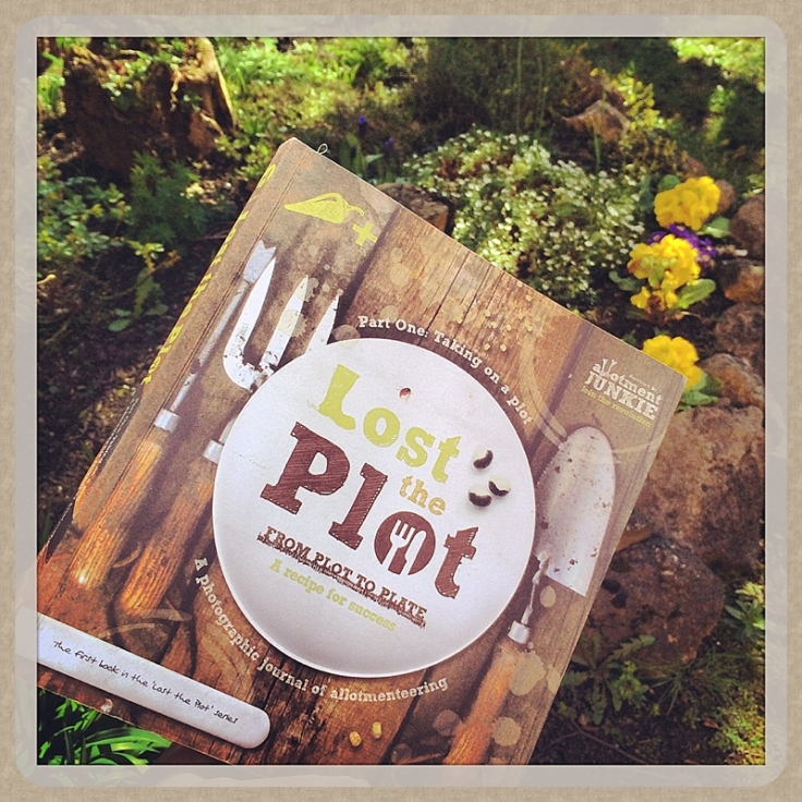 Review of Lost The Plot by Allotment Junkie