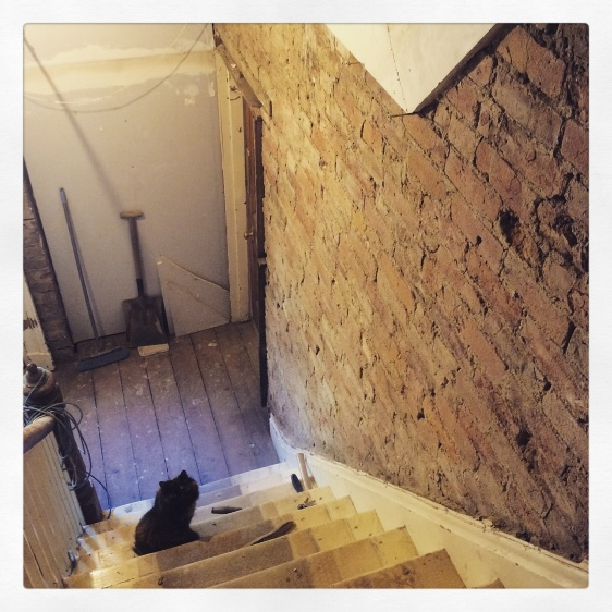 Builder Cat next to exposed brick wall on site