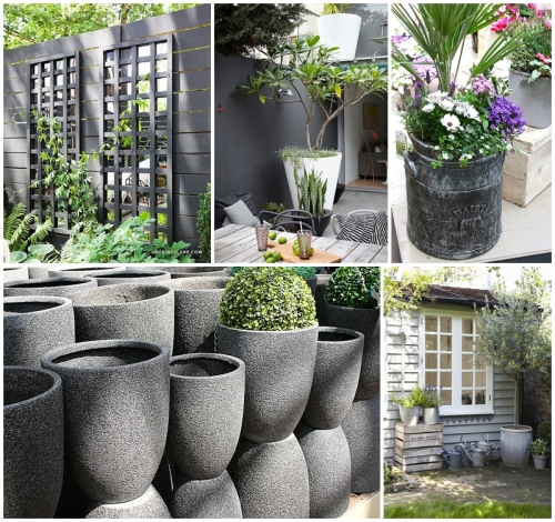 Gorgeous Garden Greys