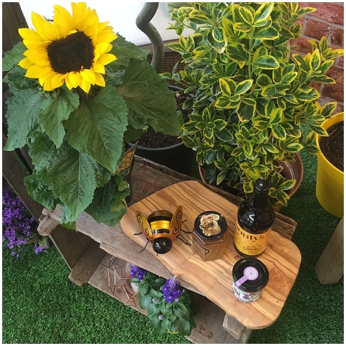 Sian Astley Moregeous Bee-friendly Garden space for Bents