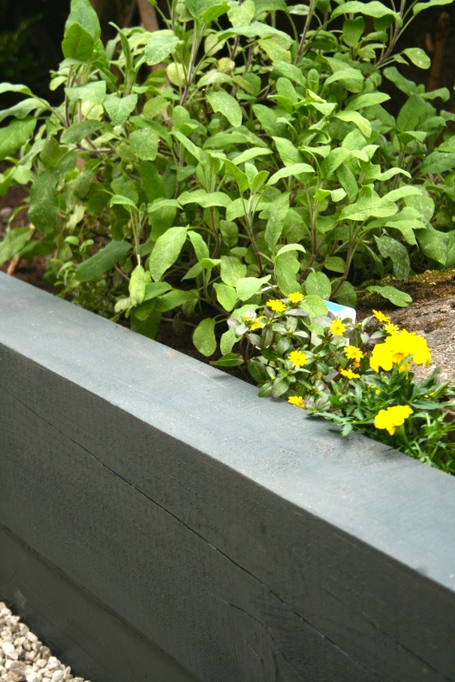 Grey sleeper wall with sage and yellow marigolds