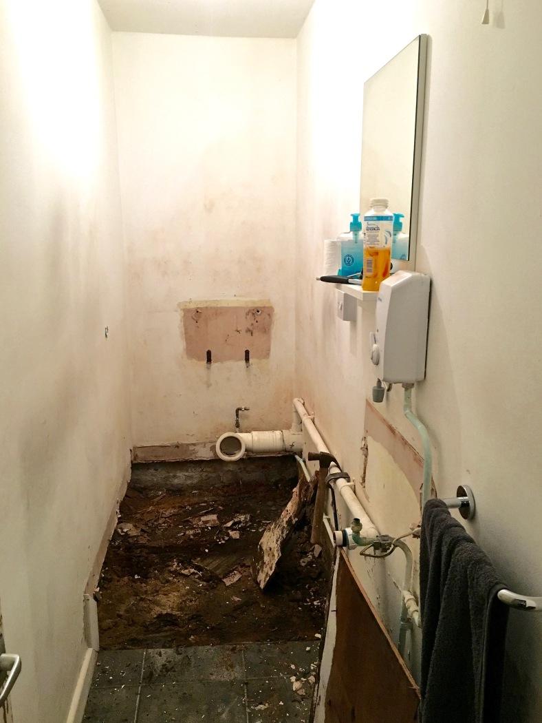 Didsbury Flower Lounge WC before