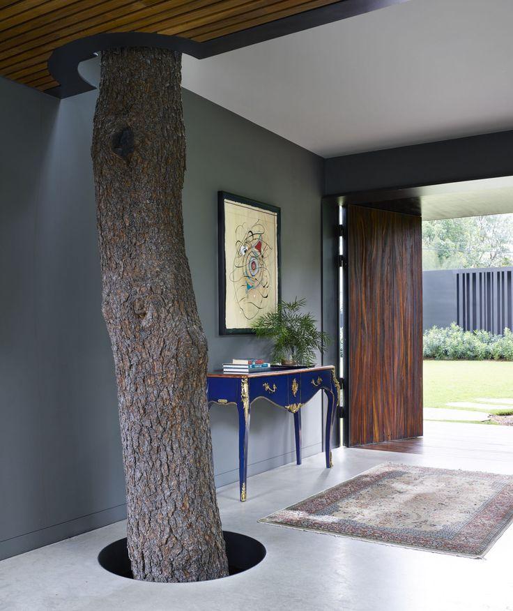 4c6dabeddccac16612718339cb2c8bac--modern-house-design-modern-houses