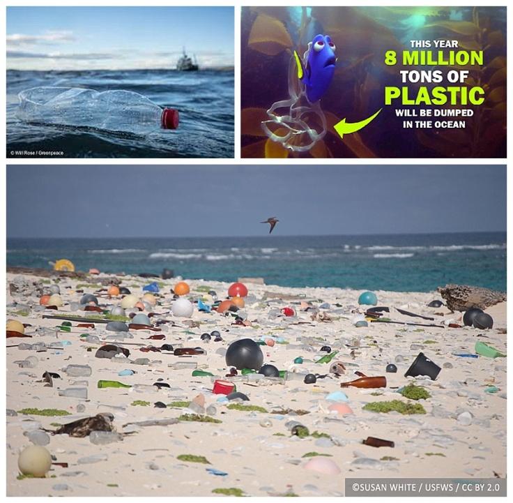 Plastic Pledge