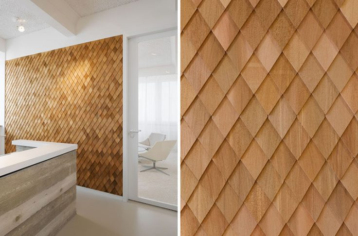Wood Shingle Wall Photo Zooey Braun