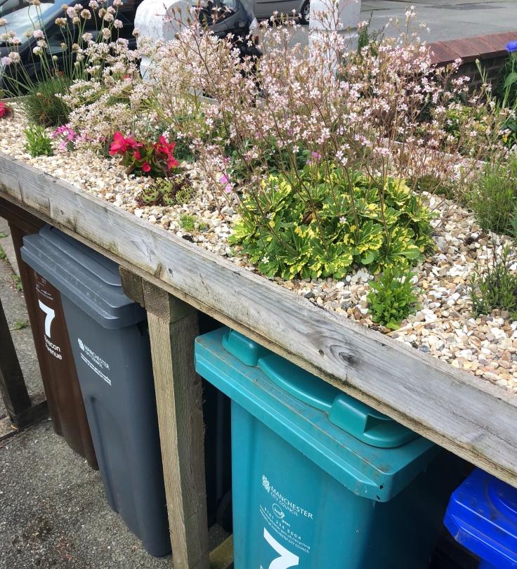 Green roof bin store