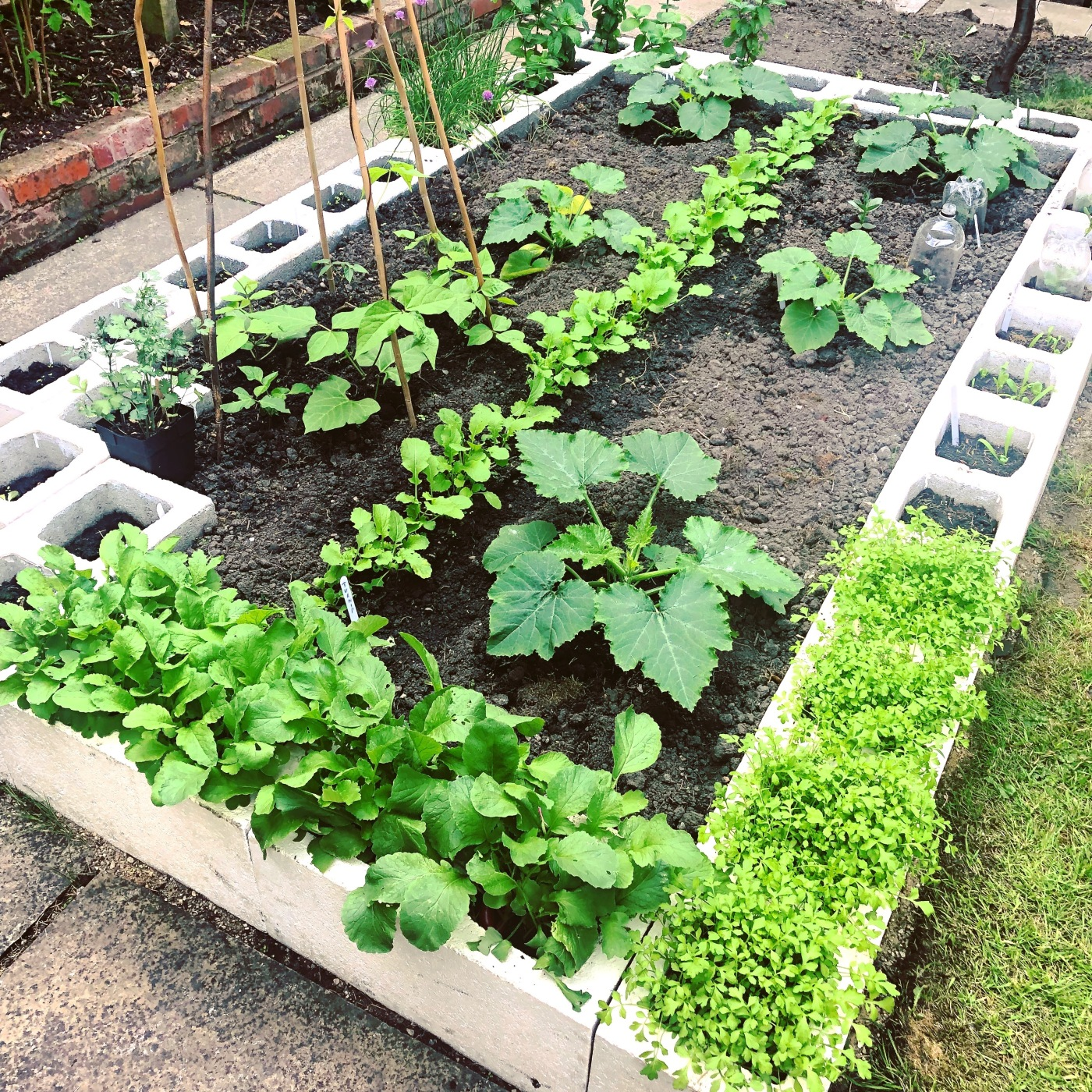 Concrete Block Garden Bed: MOREGEOUS… Making A Home More Than Gorgeous